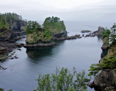 A cove at Cape Flattery