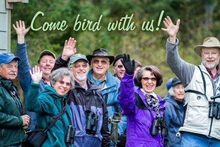 Come bird with us!
